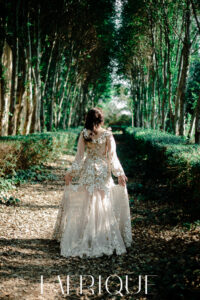 Johan Botha Wedding Dress Wedding Gown Bridal gown